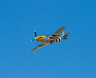Mustang P-51 Stock Photos