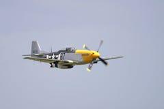 Mustang P-51 Lizenzfreies Stockbild