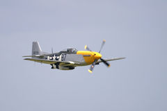 Mustang P-51 Immagine Stock Libera da Diritti