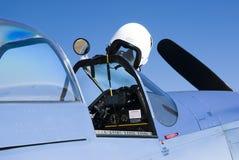 Mustang P-51 Imagens de Stock Royalty Free