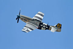 Mustang P51D & blue sky Stock Photo