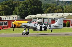Mustang P-51D fighter Royalty Free Stock Images