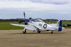 Mustang P51D royalty free stock photography
