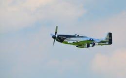 Mustang P-51 nord-américain Photo libre de droits