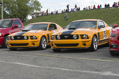 Mustang parnelli jones Stock Photography