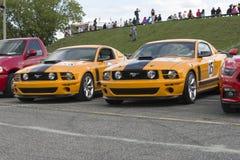 Mustang parnelli jones Stock Photography