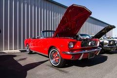 Mustang più il Car Show 2014 dello stockton Ca Immagini Stock