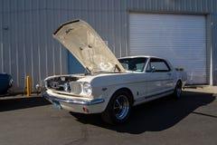 Mustang più il Car Show 2014 dello stockton Ca Fotografia Stock Libera da Diritti