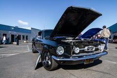 Mustang più il Car Show 2014 dello stockton Ca Immagini Stock Libere da Diritti