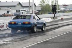 Mustang que faz um começo na trilha na linha de partida foto de stock royalty free