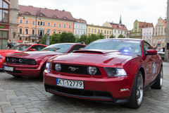 Mustang Race start in Wroclaw, Poland Royalty Free Stock Photos