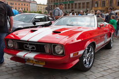 Mustang Race start in Wroclaw, Poland Stock Photo