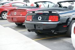 Mustang Rear End. Picture of brand new mustang rear end royalty free stock photography
