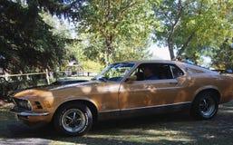 Mustang restaurado clássico de Brown Fotos de Stock Royalty Free