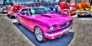 Mustang rosa immagini stock