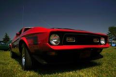 Mustang rouge agressif image libre de droits