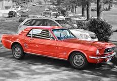 Mustang Sally Fix stock foto's