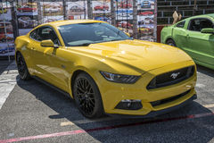 2015 mustang  Stock Photography