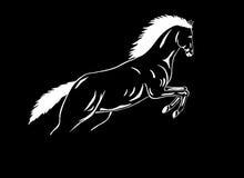 mustang sautant blanc noir de cheval Image stock