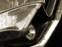 Mustang sepia on the rain. Mustang sepia with chrome detail royalty free stock photos
