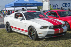 Mustang shelby Lizenzfreie Stockfotografie