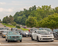 Mustang, Shelby AC Cobra, and Camaros, Woodward Dream Cruise Royalty Free Stock Photography