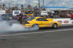 Mustang smoke show royalty free stock photos
