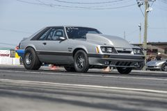 Mustang at the starting line Stock Photography