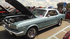 Mustanga samochodowy przedstawienie Fotografia Stock