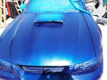 Mustangautoblau und purpurrot stockfoto