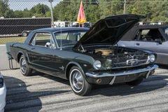 Mustangcoupé 1966 Stockfoto