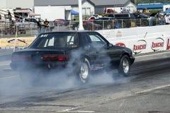 Mustangdoorsmelting Royalty-vrije Stock Afbeelding