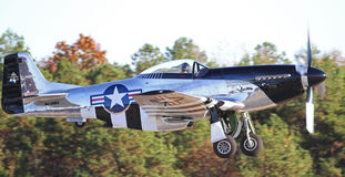 Mustangkämpe för tappning P-51 Arkivbilder