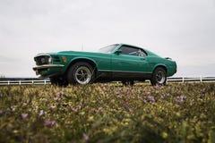 MustangMach 1970 1 Royaltyfria Foton
