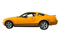 Mustango Foto de archivo