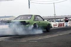 Mustango en la acción en la pista Imagen de archivo libre de regalías