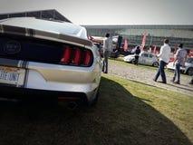 Mustango GT imágenes de archivo libres de regalías