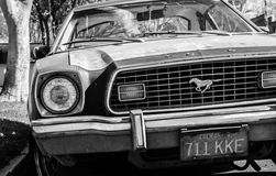 Mustango viejo imagen de archivo