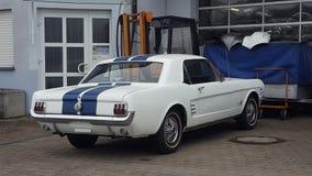 Mustango viejo Fotografía de archivo libre de regalías