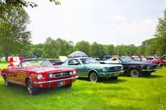 Mustangos en la demostración auto 2011 de la playa Foto de archivo libre de regalías