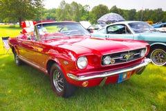 Mustangos en la demostración auto 2011 de la playa Imagenes de archivo