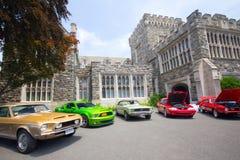 Mustangos en la demostración auto 2011 de la playa Imágenes de archivo libres de regalías