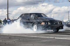 Mustangrökshow Royaltyfri Bild