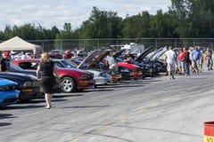 Mustangrij Royalty-vrije Stock Foto