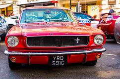 mustangs Images stock