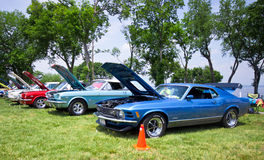 Mustangs on the Beach Auto Show 2011 Royalty Free Stock Image