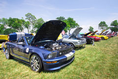 Mustangs on the Beach Auto Show 2011 Royalty Free Stock Photography