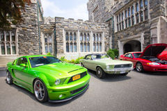 Mustangs on the Beach Auto Show 2011 Royalty Free Stock Photos