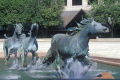 Mustangs of Los Colinas, Worlds largest Equestrian sculpture, Los Colinas, TX Royalty Free Stock Image
