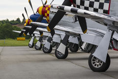 Mustangs P-51 Image stock